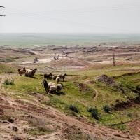Raphaël nous a raconté son expérience au Rojava, Kurdistan syrien