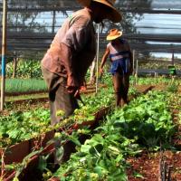 Mathieu nous a parlé de la transition en agriculture