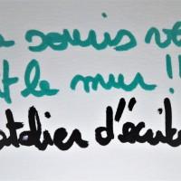 L' atelier d' écriture : la sourie verte fait le mur !