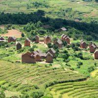 Florian et Felana nous ont parlé d'une expérience d'agriculture biologique à Madagascar