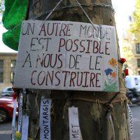 Thomas nous a parlé du statut juridique de l'arbre en France : vers quelle évolution pour quelle protection?