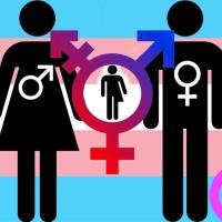 Tess nous a parlé de cisexisme et transphobie